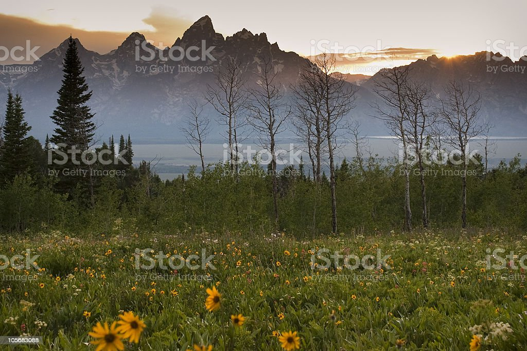 Sunset over Grand Tetons from Shadow Mountain stock photo