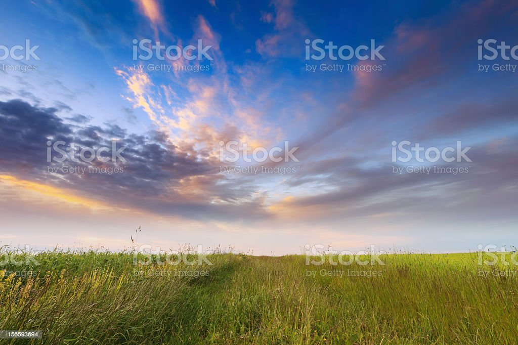 Sunset over green field royalty-free stock photo