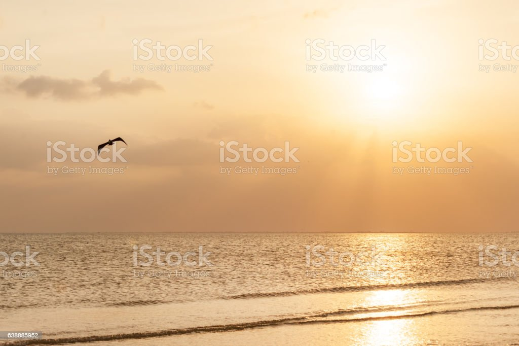 Sunset over Gulf of Mexico stock photo