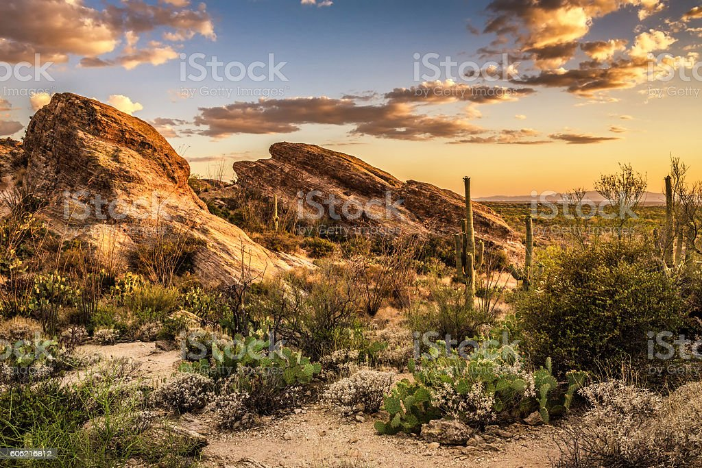 Sunset over Javelina Rocks in Saguaro National Park stock photo