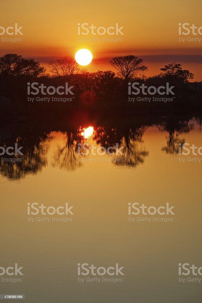Sunset over Marsh vertical stock photo