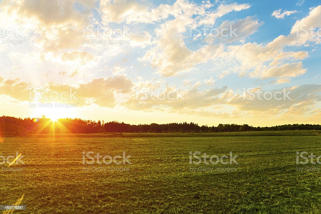 Sunset over meadow royalty-free stock photo