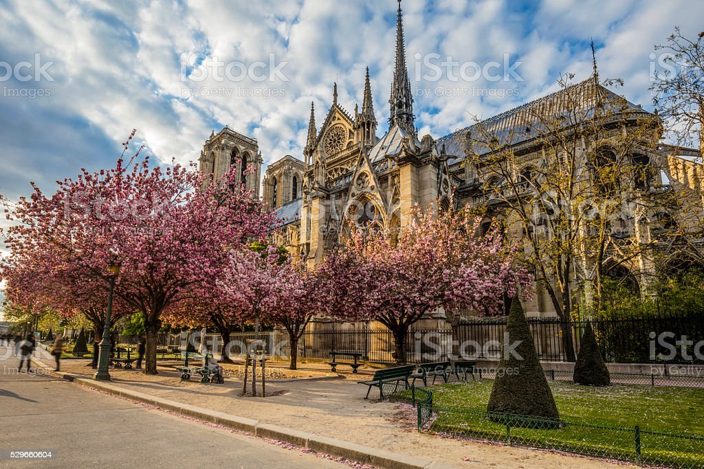 Sunset over Notre Dame cathedral at spring stock photo
