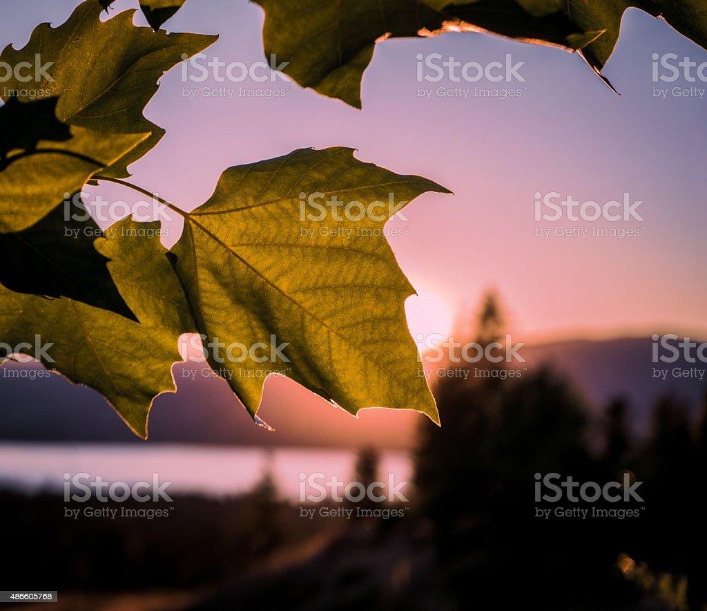 Sunset Over Okanagan Lake stock photo