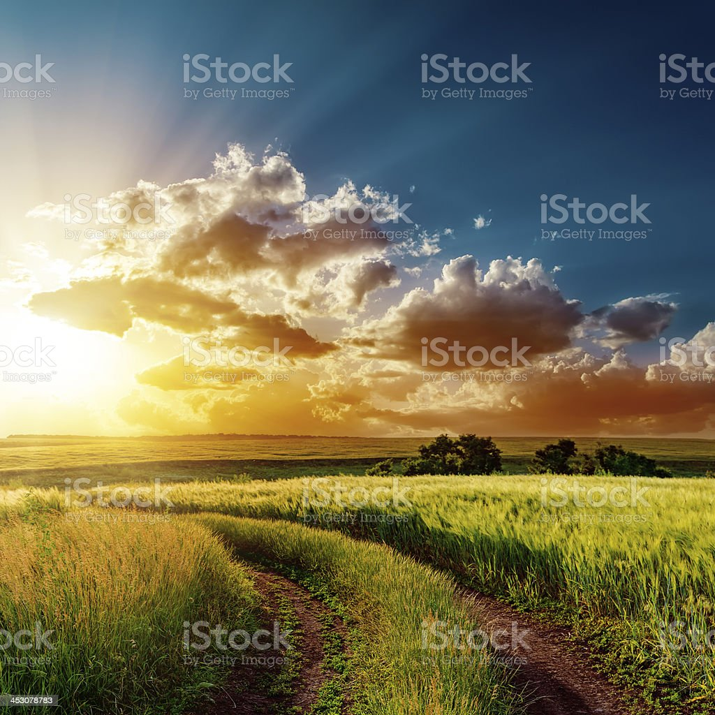 sunset over road in fields stock photo