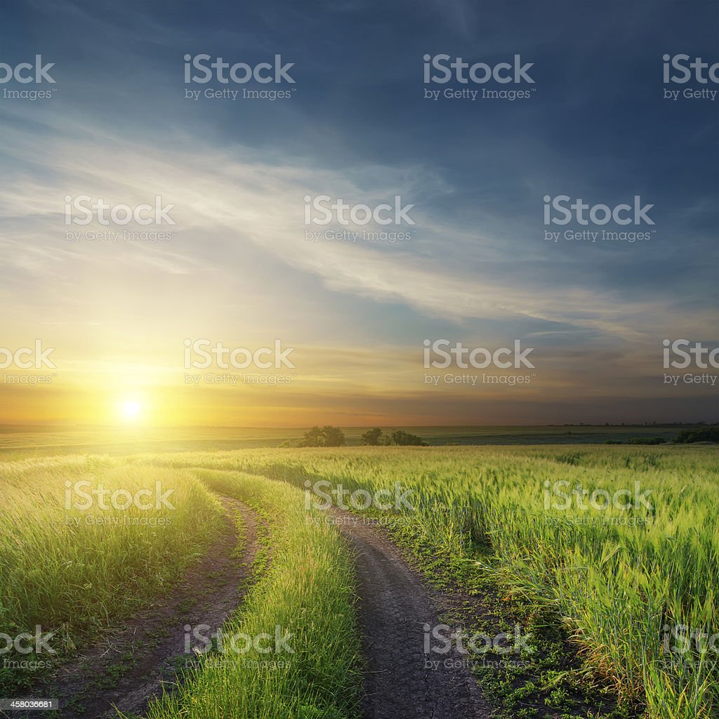 sunset over road in green fields stock photo