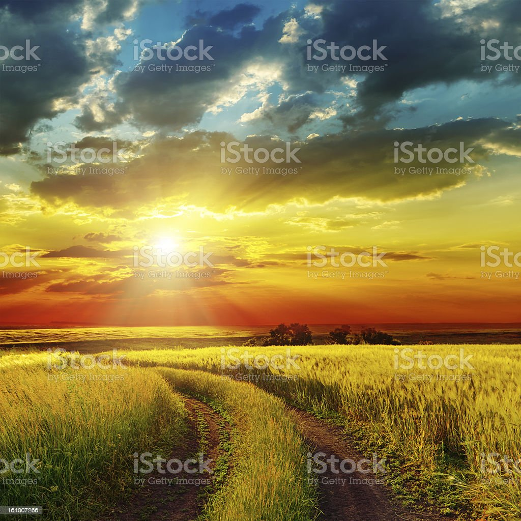 sunset over rural road near green field stock photo