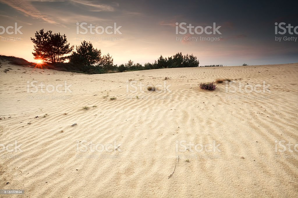 sunset over sand dune with textures stock photo