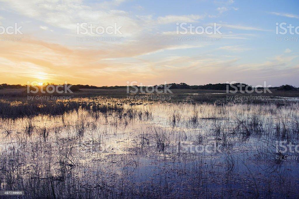 Sunset Over Scenic Everglades National Park Landscape Florida USA stock photo