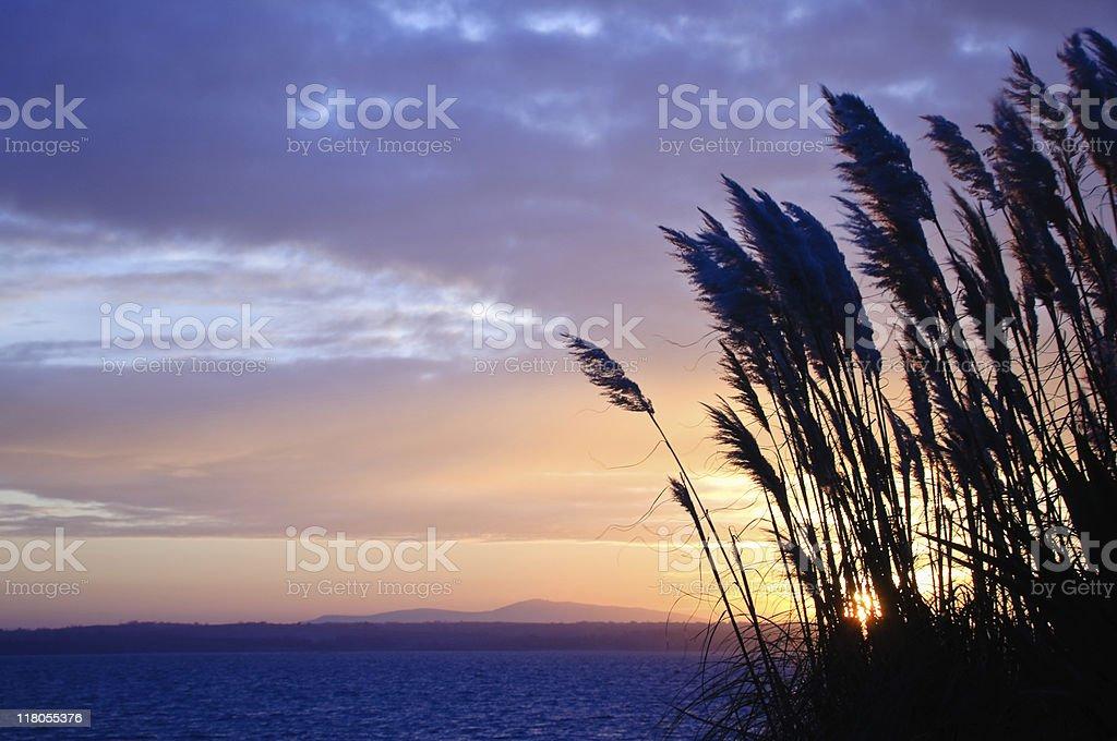 Sunset over Strangford Lough royalty-free stock photo
