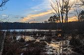 Sunset over swamp.