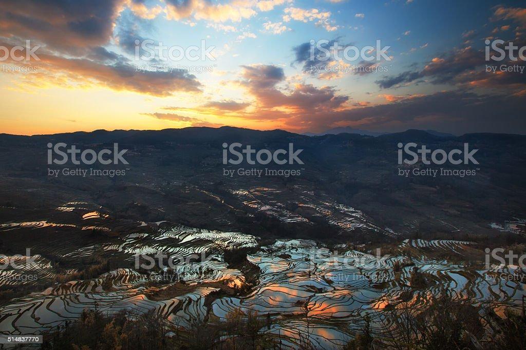 Sunset over terrace rice fields stock photo