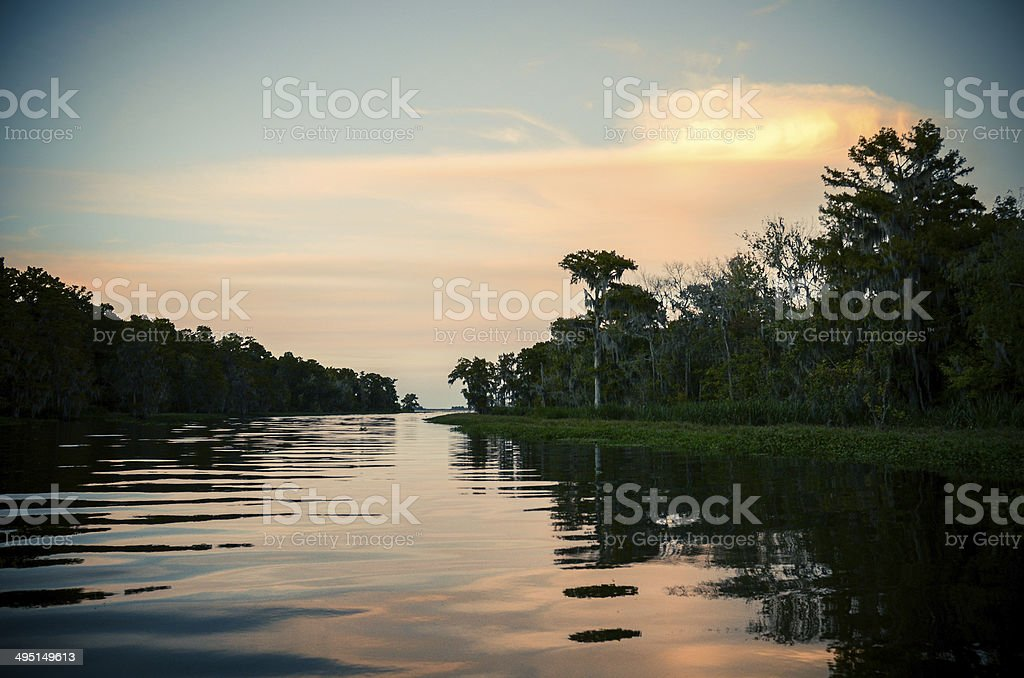 sunset over the bayou stock photo