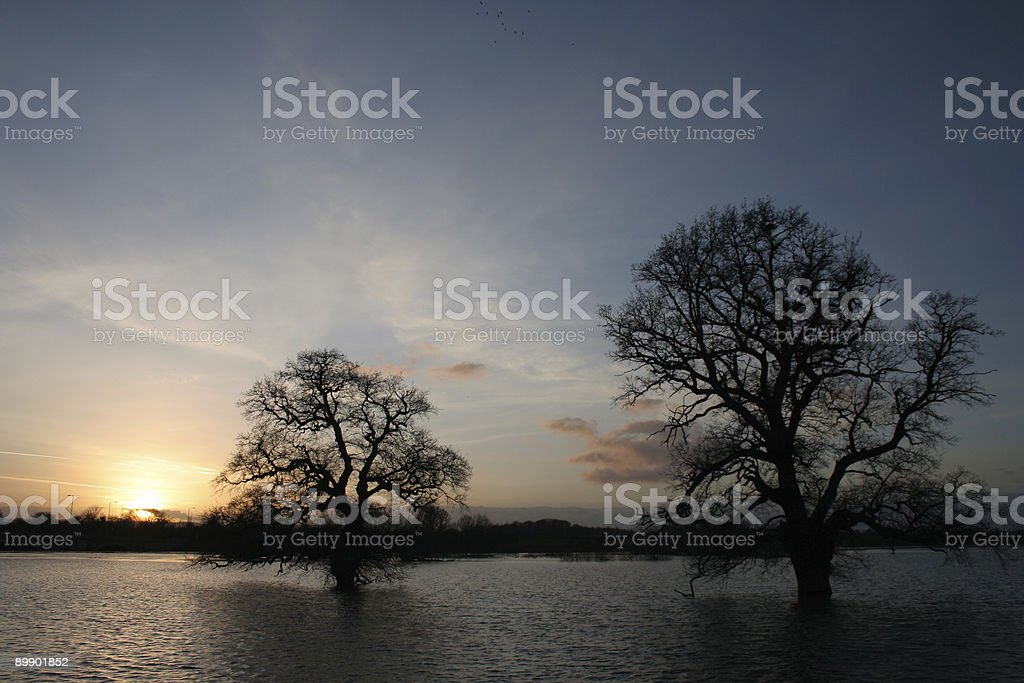 sunset over the flooded severn royalty-free stock photo