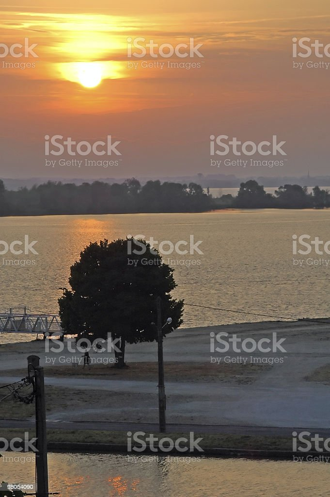 Sunset over the Gironde (Aquitaine, France): lonely tree silhouette stock photo