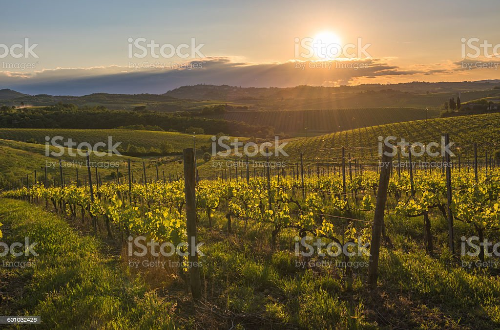 Sunset over the hills of Tuscany, Italy stock photo