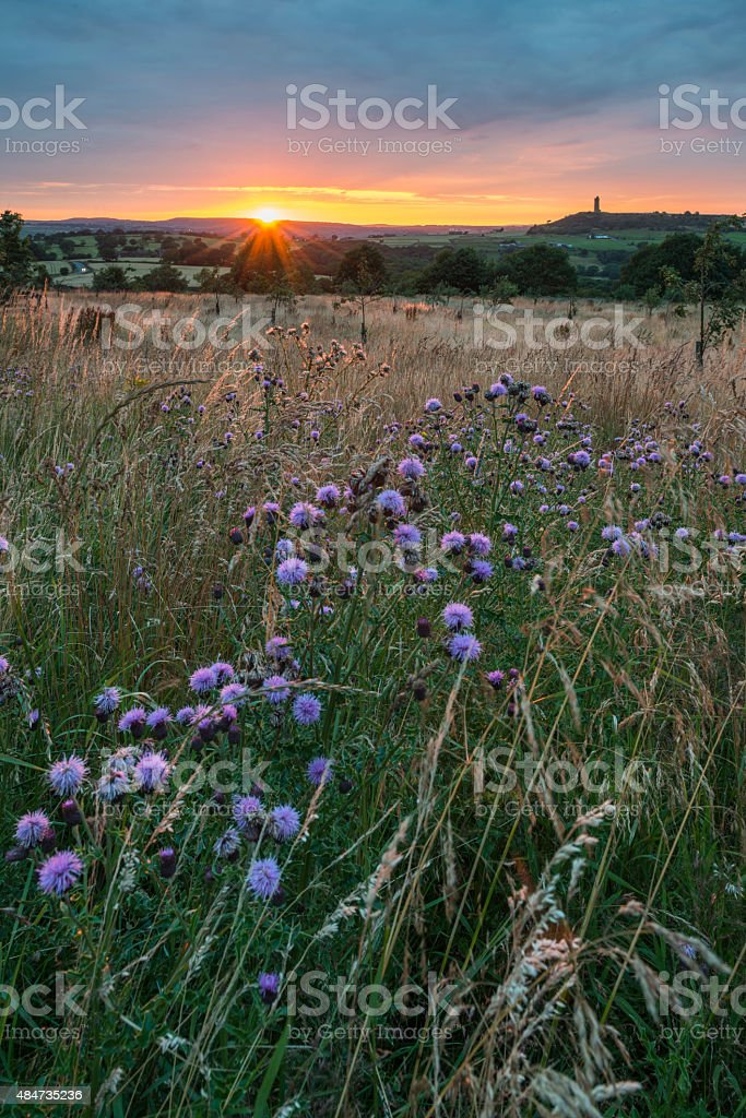 Sunset over the Landscape stock photo