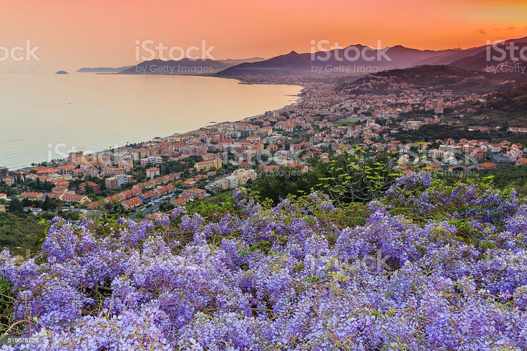 Sunset over the Ligurian Sea with wisteria stock photo