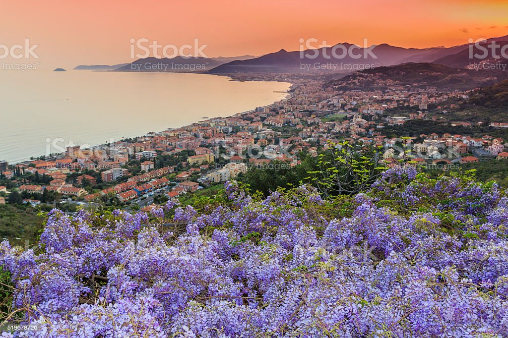 Sunset over the Ligurian Sea with wisteria stock photo