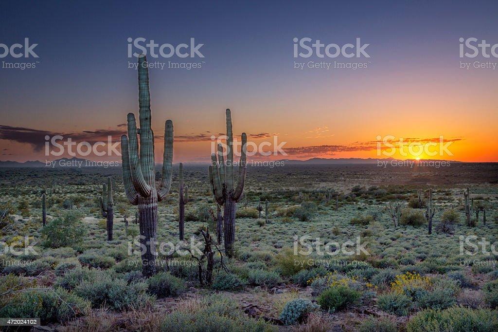 Sunset over the Phoenix Valley in Arizona stock photo