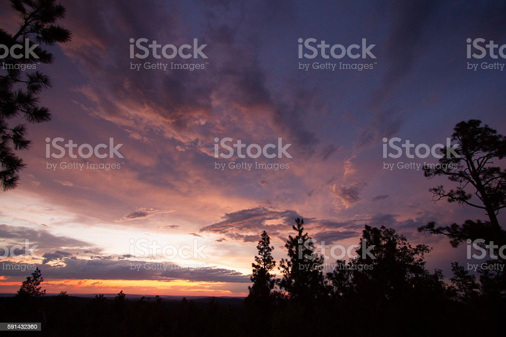 Sunset Over Trees stock photo