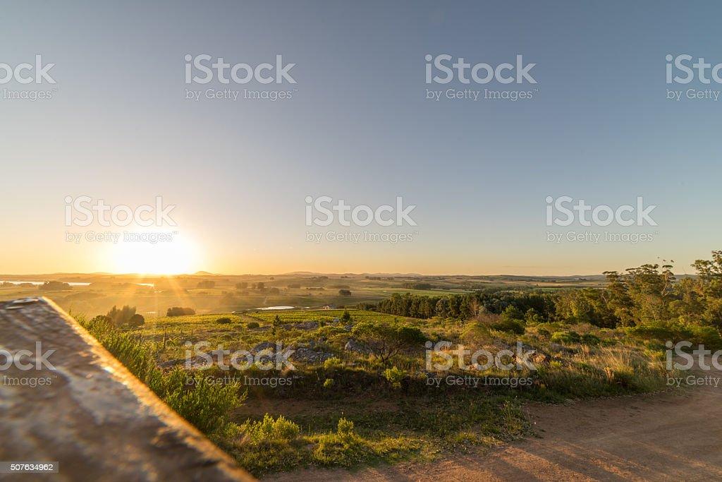 Sunset over Uruguay Vineyard stock photo