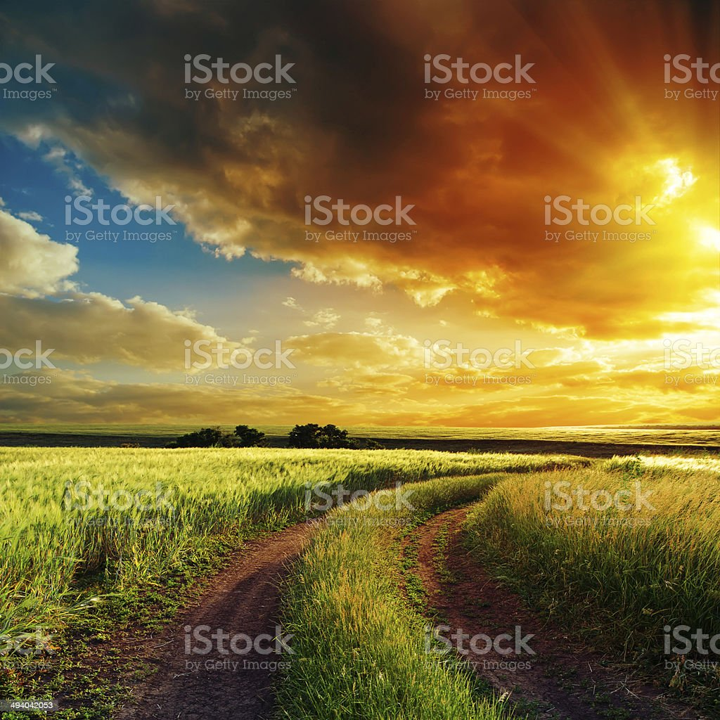 sunset over winding road in field stock photo