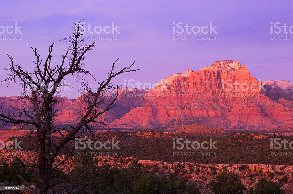 Sunset Over Zion Mountain Valley Landscape royalty-free stock photo
