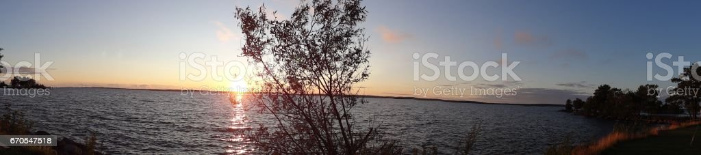 Sunset panorama with bush and Vättern lake in Sweden stock photo
