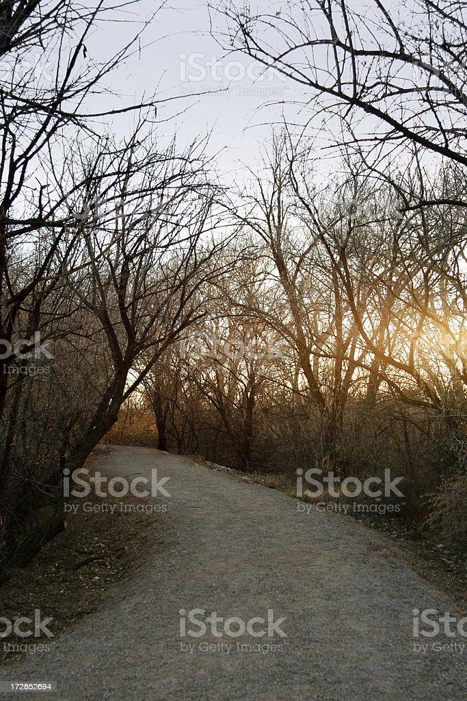 Sunset Path stock photo