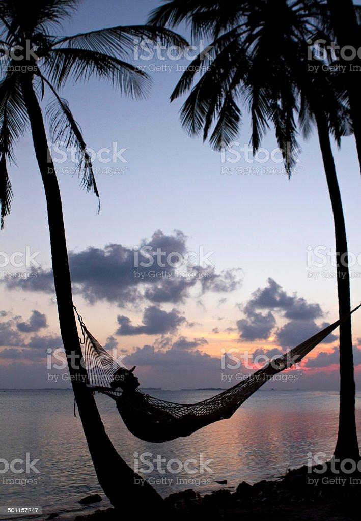 Sunset relaxation stock photo