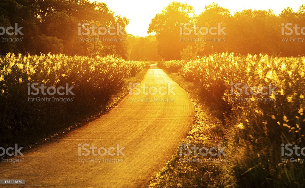 Sunset Road royalty-free stock photo