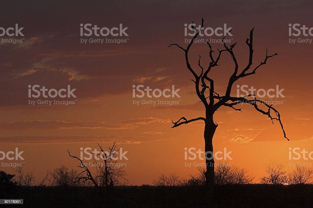 Sunset romantic royalty-free stock photo