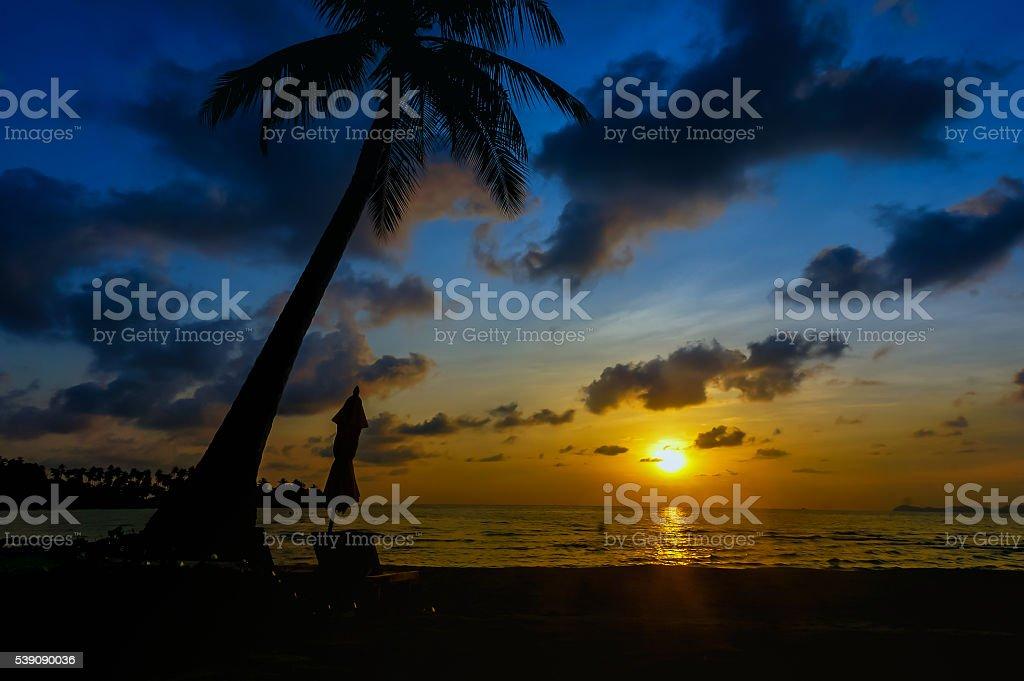 Sunset silhouette at Beach of Koh Kood stock photo