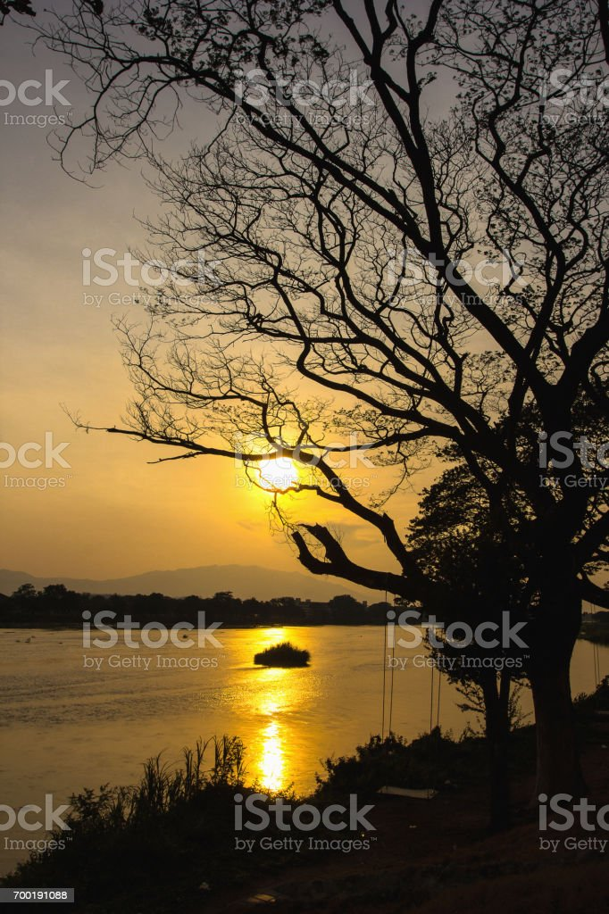 Sunset silhouette with river and trees. stock photo