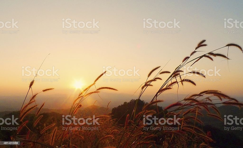 Sunset Sky backgrounds stock photo