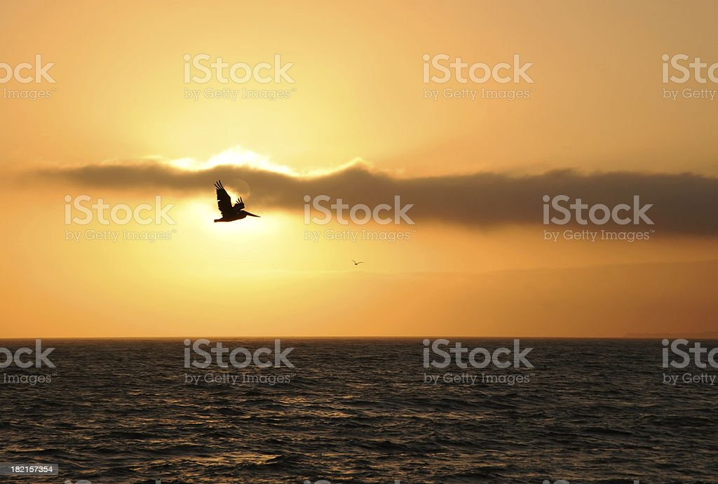 Sunset Soaring Above The Pacific Ocean stock photo