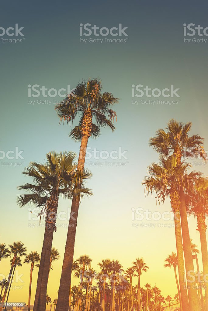 Sunset strip in los angeles royalty-free stock photo