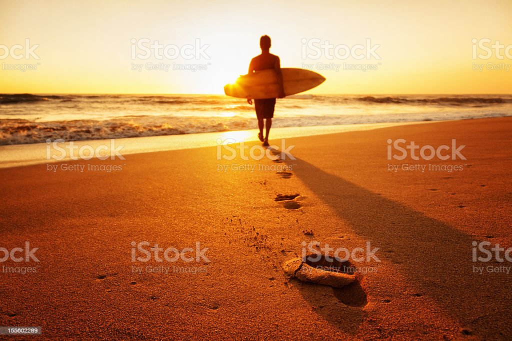 Sunset Surfer stock photo