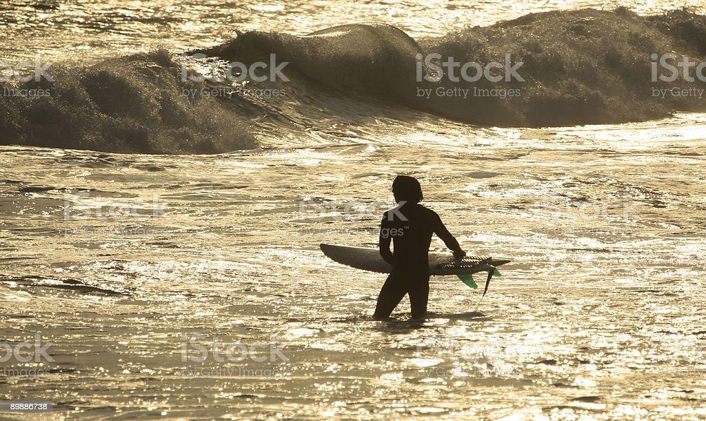 Atardecer surfista foto de stock libre de derechos