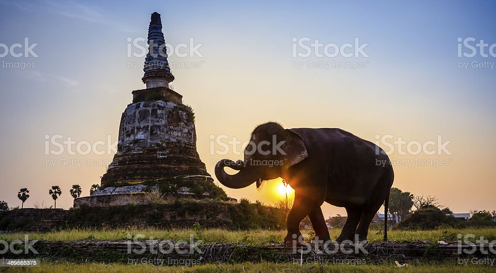 Sunset Thai countryside in Thailand stock photo