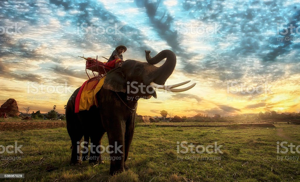 Sunset Thai countryside stock photo