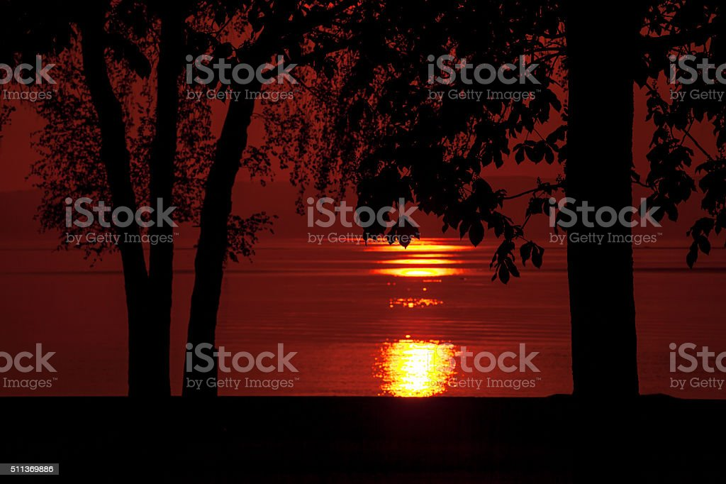 Sunset through dark trees, sun reflecting on lake, Lac Leman stock photo