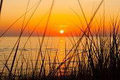 Sunset through the dunegrass