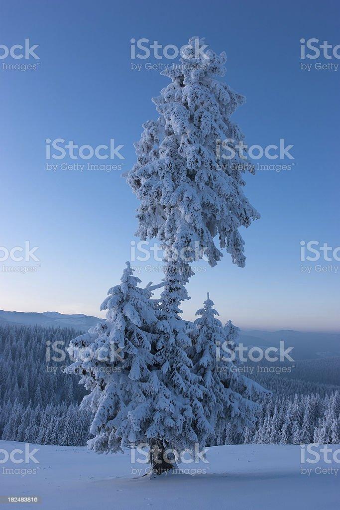 Sunset Winter Landscape stock photo
