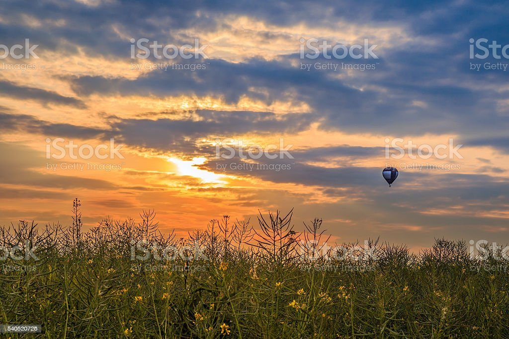 sunset with balloon in dresden stock photo