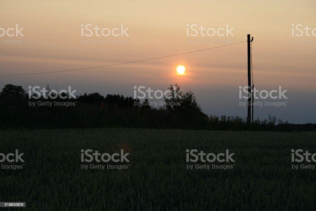 sunset with cabel pole stock photo