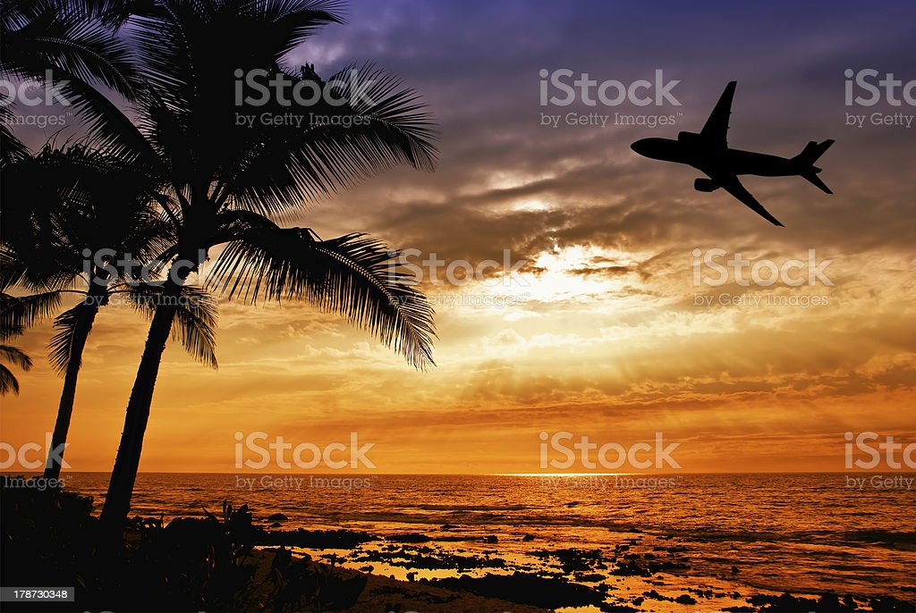 Sunset with palm tree and airplane silhouettes stock photo