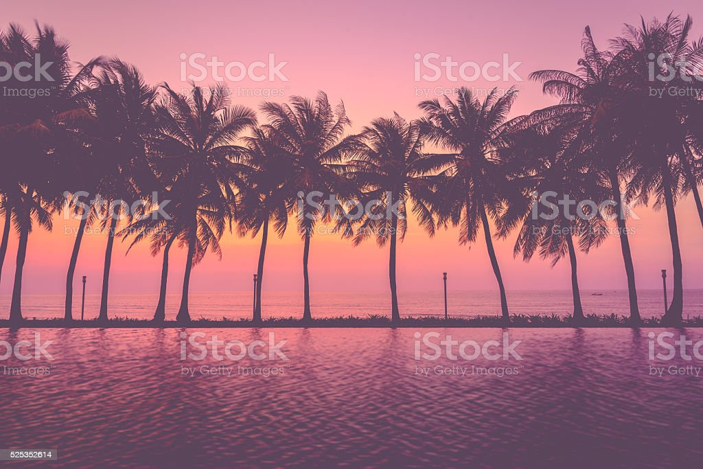 Sunset with silhouette Palm trees, Pastel Style stock photo
