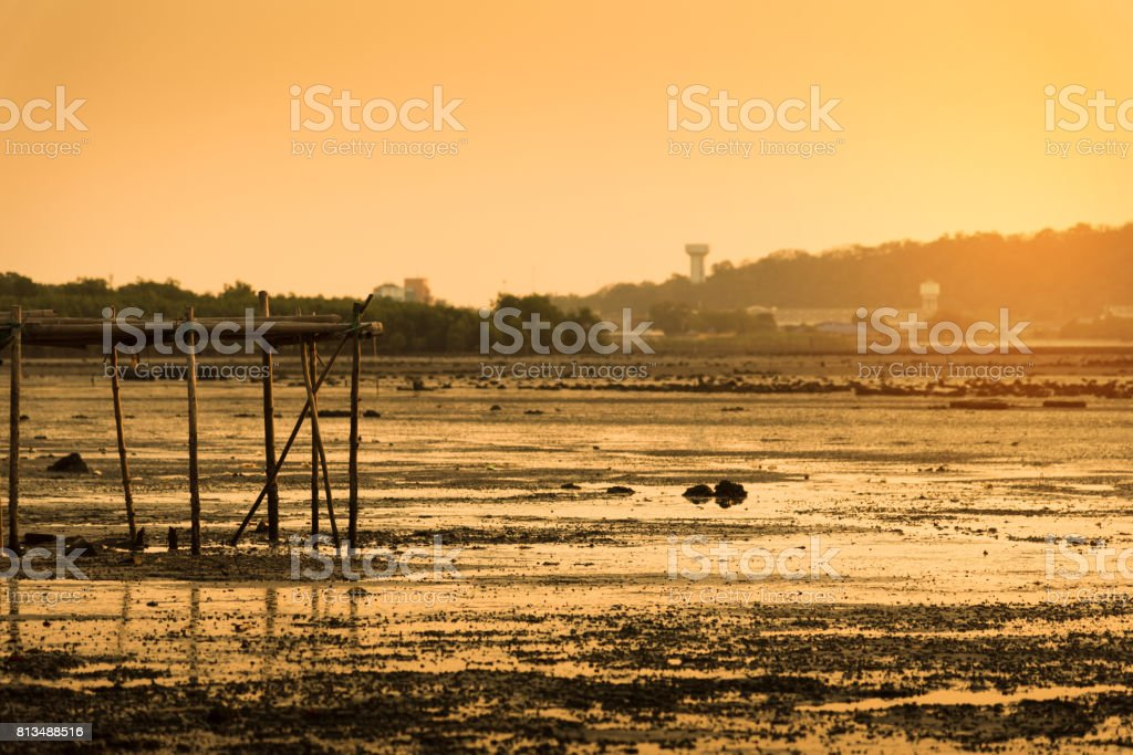 Sunset with wetland in thailand. stock photo